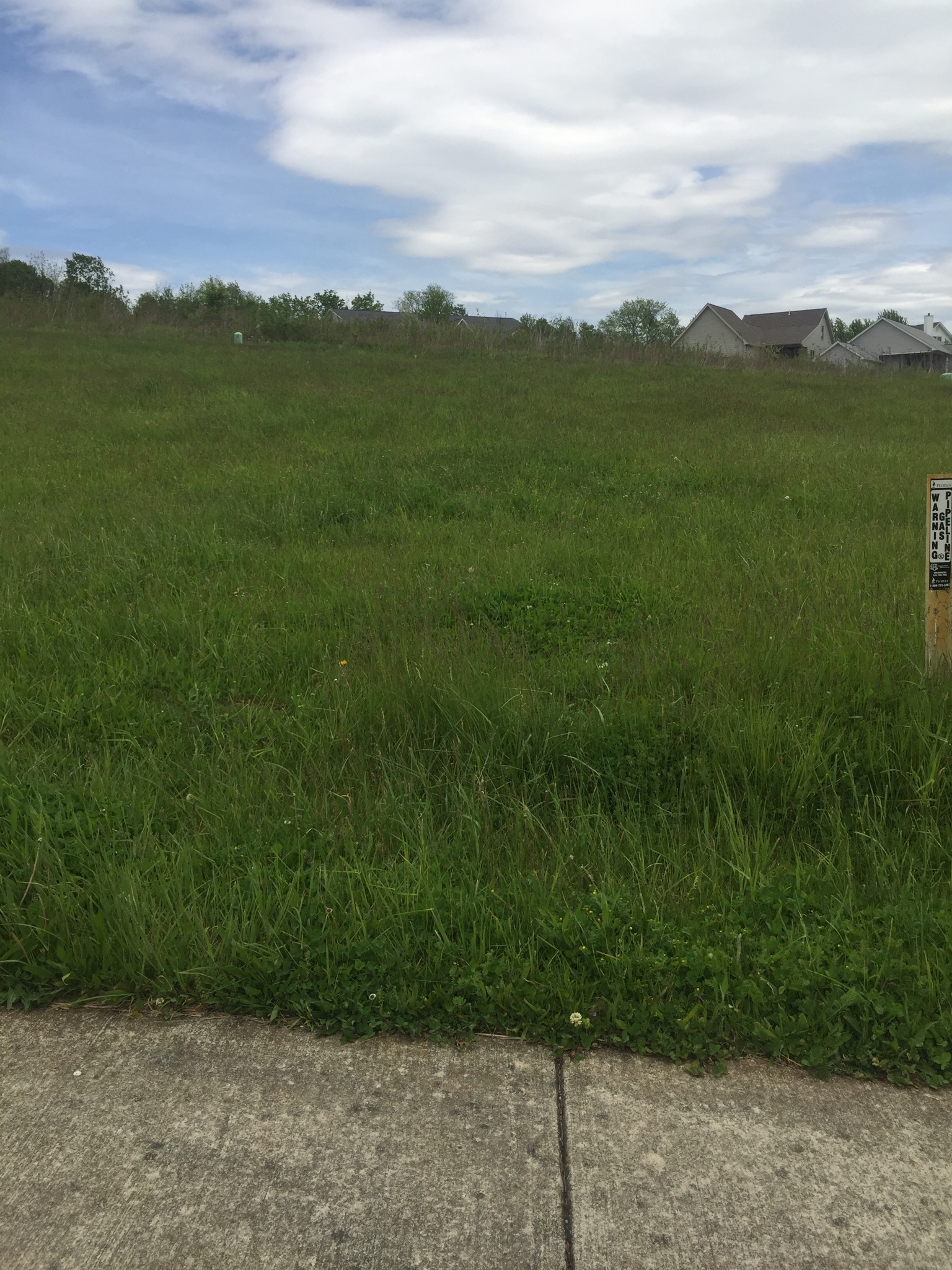 Building Lots for Sale!   Starting at $49,900